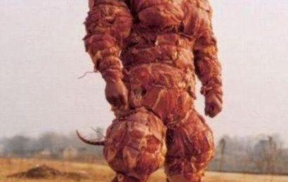 Главный босс вегетарианцев
