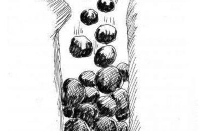 Словечки-камушки