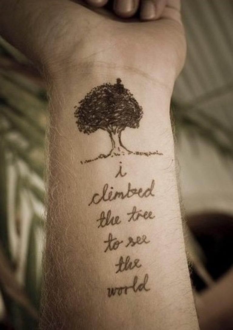 Я забрался на дерево, чтобы увидеть мир