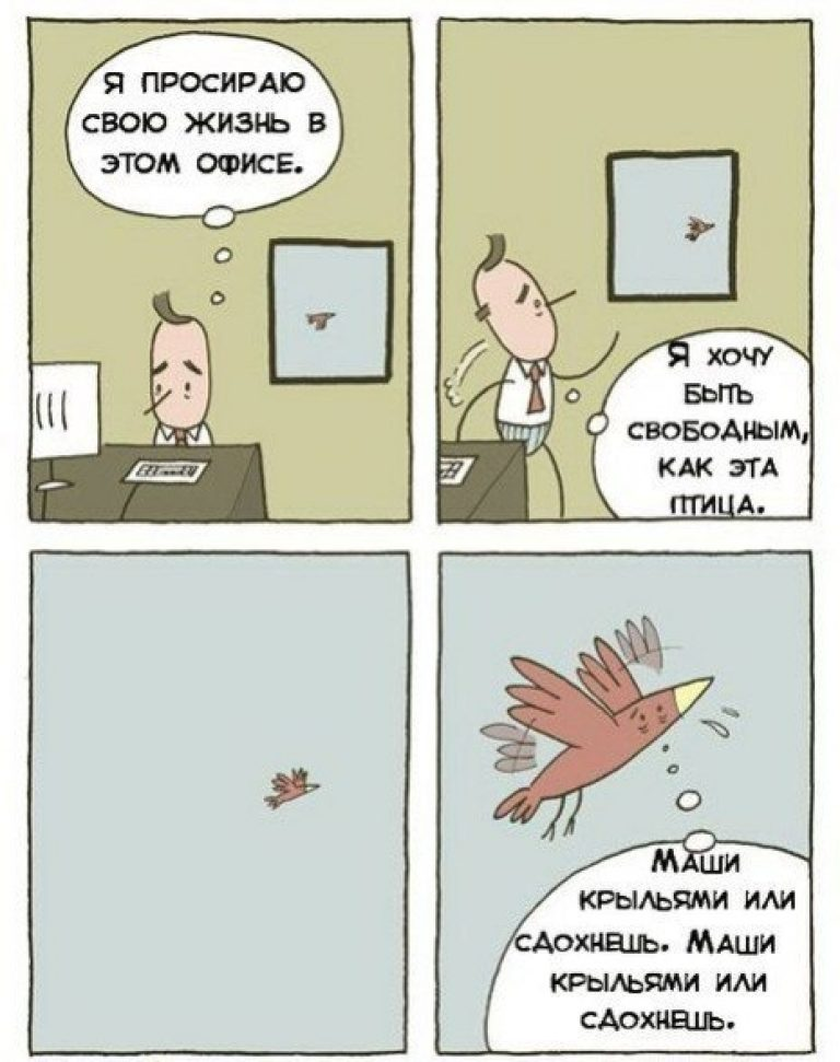 Хочу быть свободным, как птица