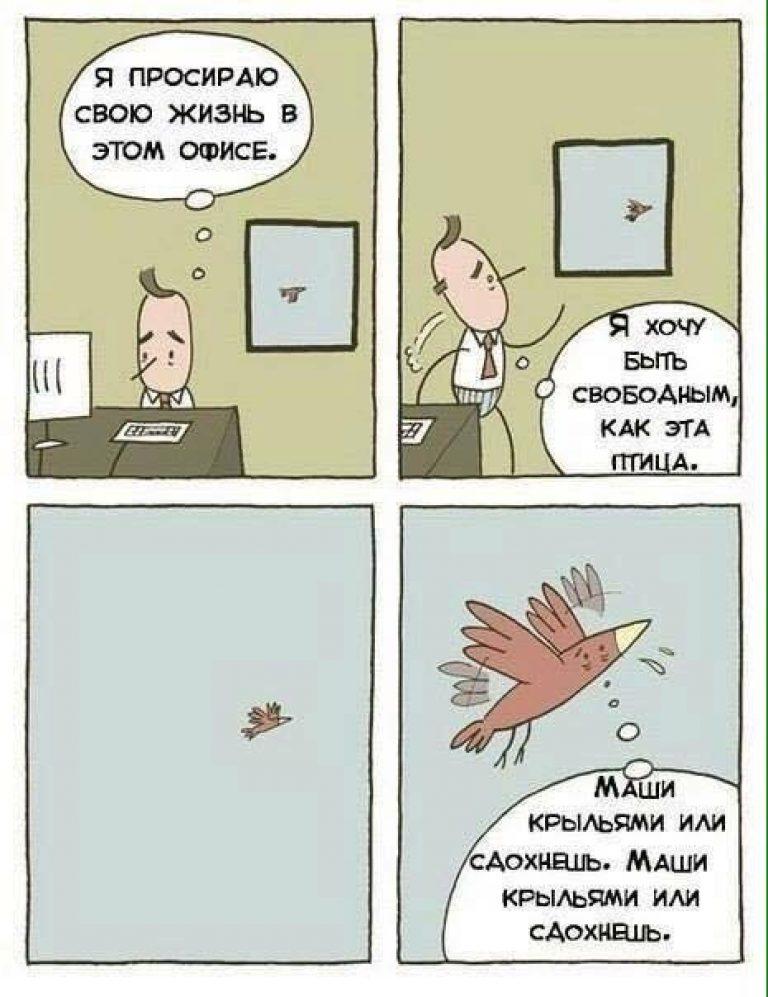 Свободным, как птица