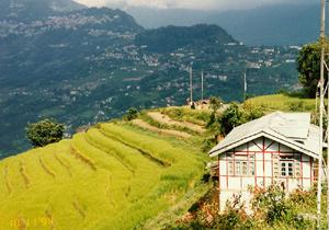 Индия: Тур по монастырям с буддийским Ламой